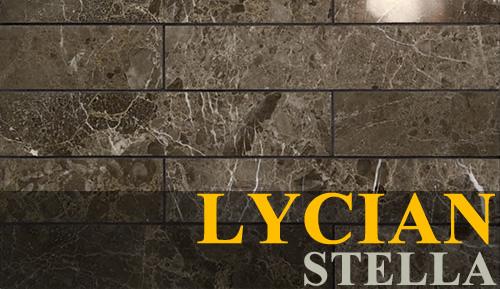 Lycian Stella tile - Berkeley, CA